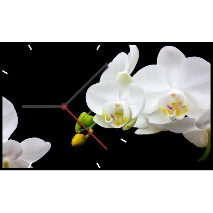 """TIME 2GO 1015  """"Орхидея"""""""